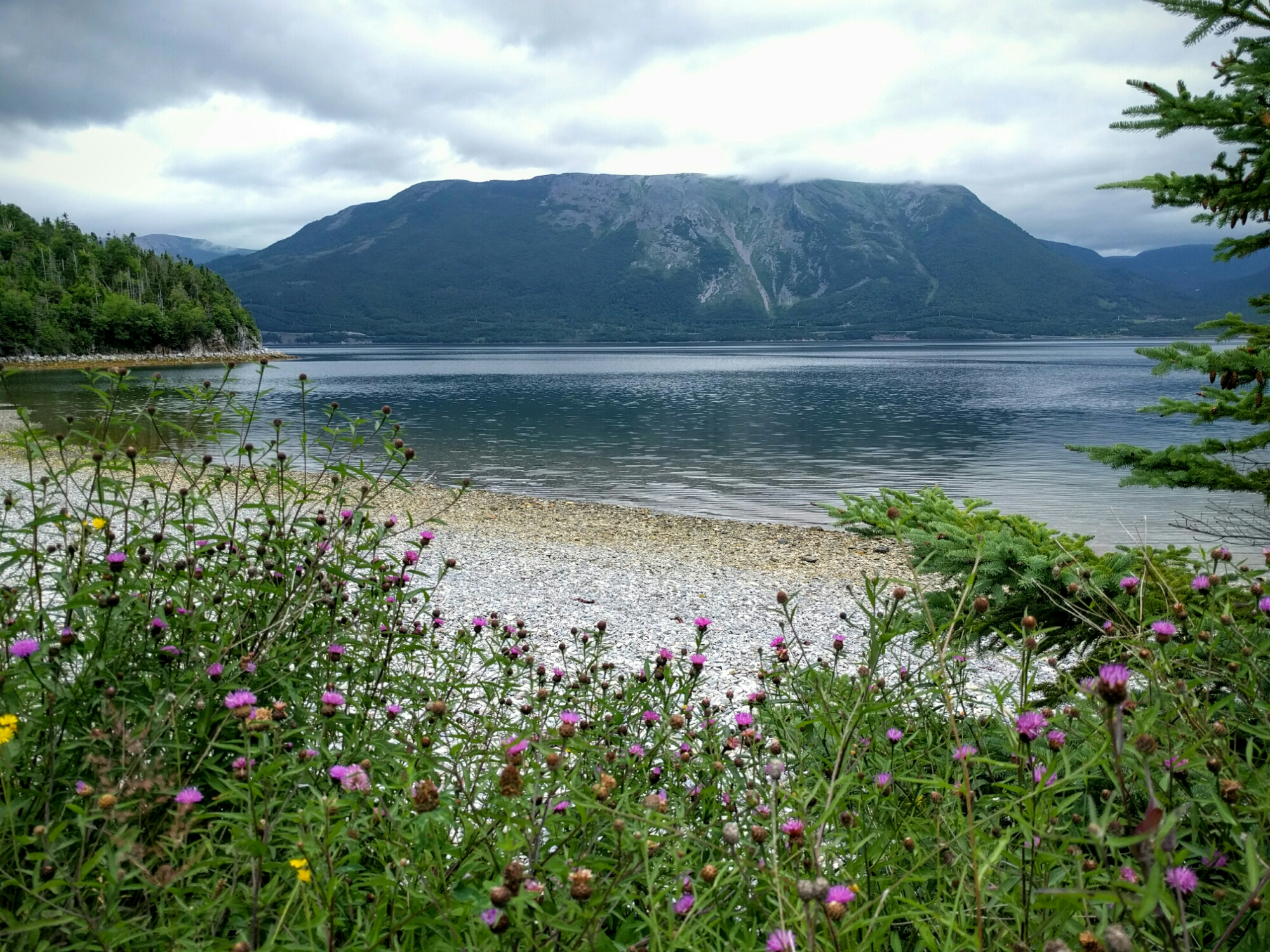 The beach at Trout River campground in Gros Morne, NL