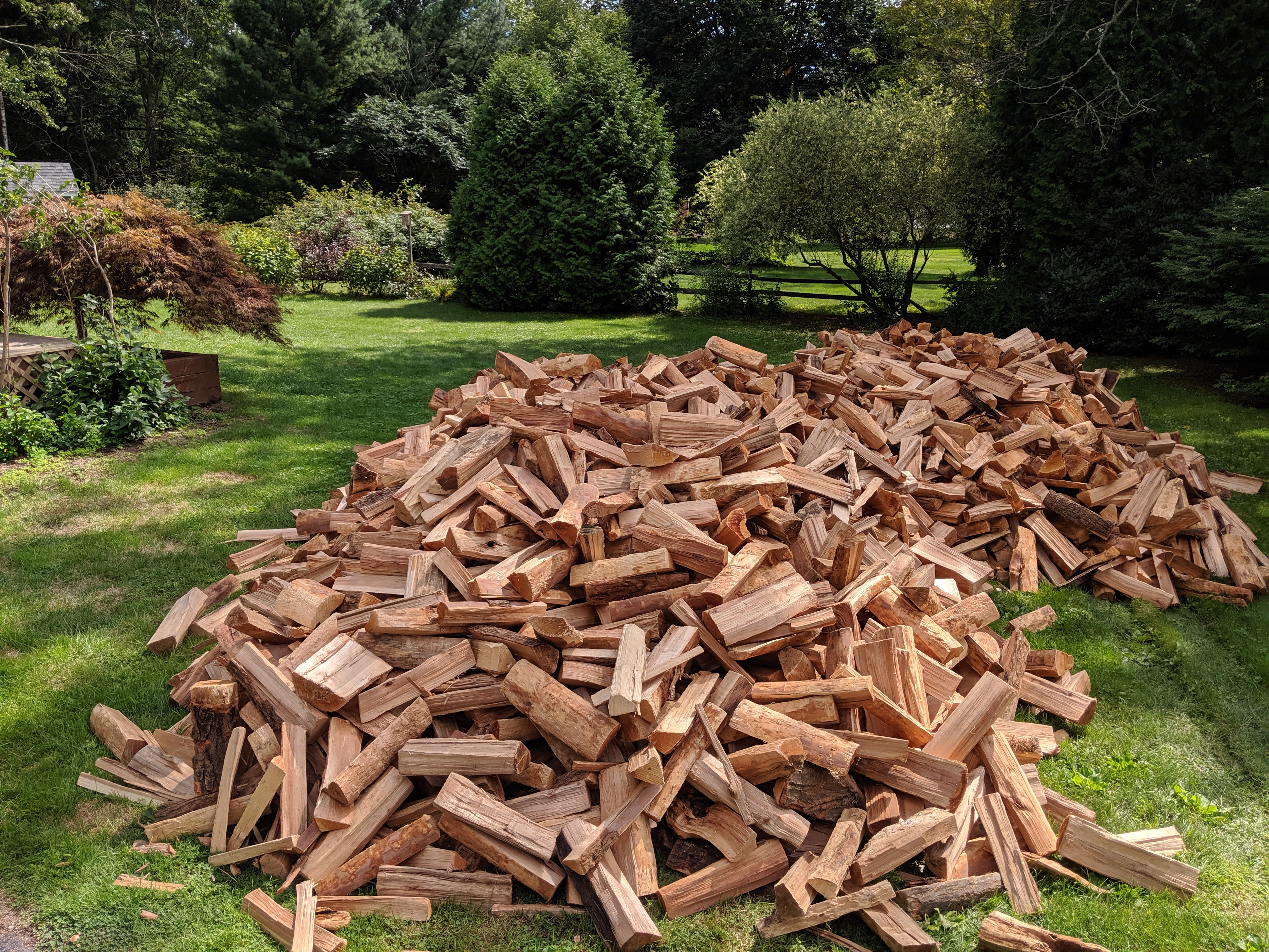 I'd say we have enough wood...